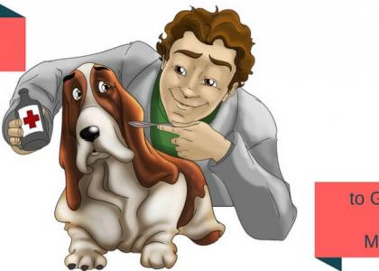 Tips & Tricks to Give Your Dog the Medicine He Might Need