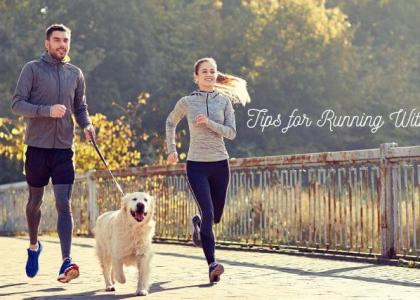Tips for running with dogs